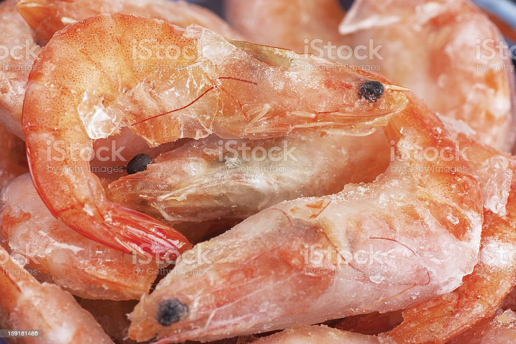 Frozen shrimps royalty-free stock photo