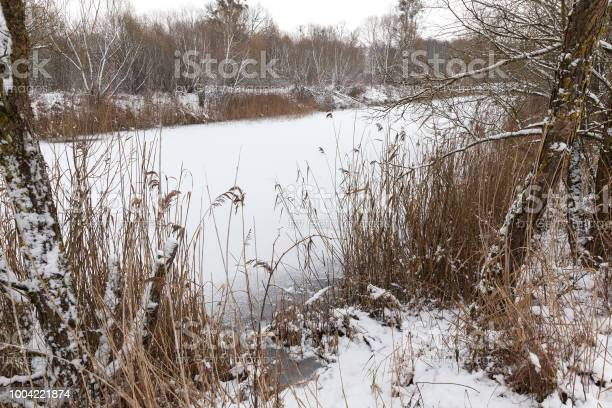 Photo of frozen small pond
