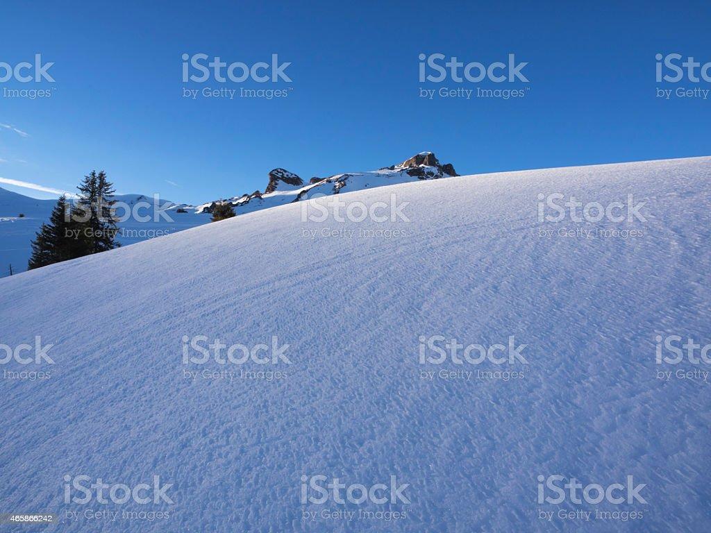 Frozen snow in the evening sunlight stock photo