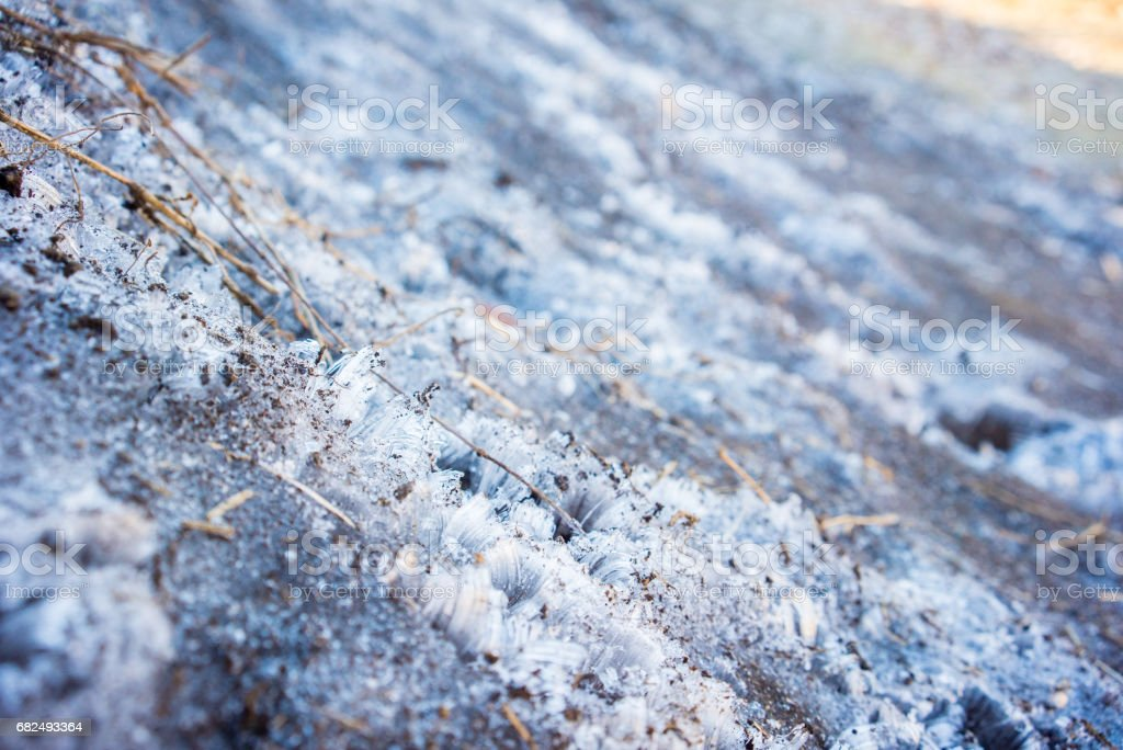 Frozen soil royalty-free stock photo