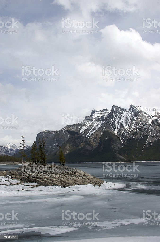 Frozen Solitude royalty-free stock photo