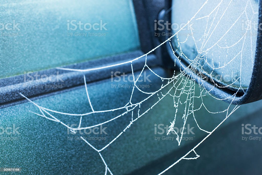 frozen spider web on side view mirror of car stock photo
