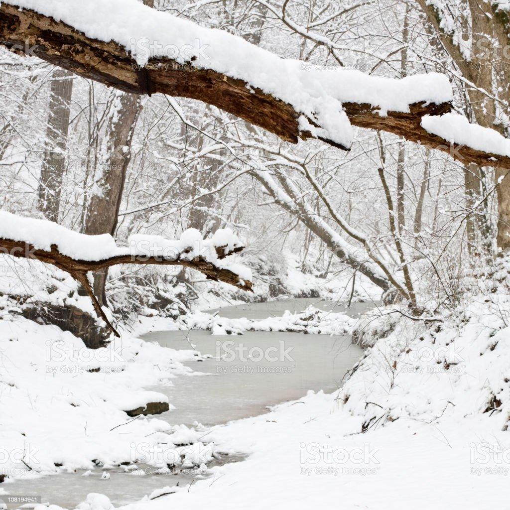 Frozen Stream in Snowy Forest royalty-free stock photo
