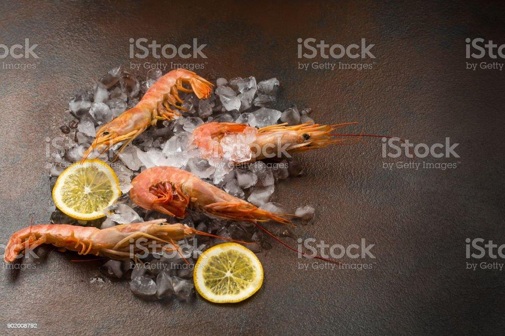 Frozen tiger shrimp on ice on a dark stone table stock photo