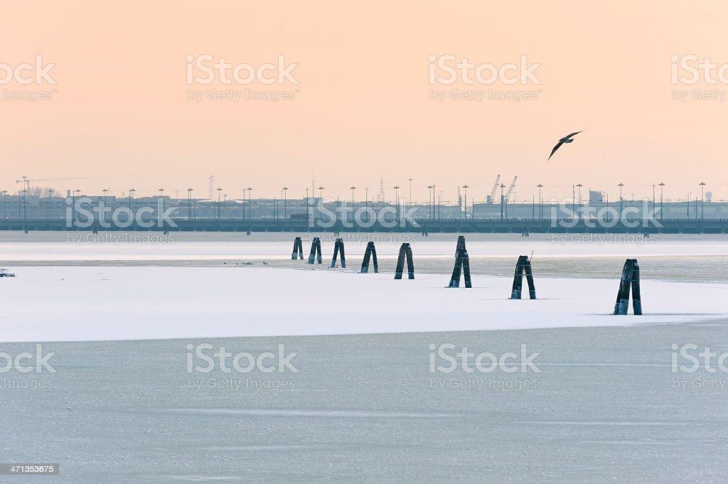 Frozen Venetian Lagoon at dawn royalty-free stock photo