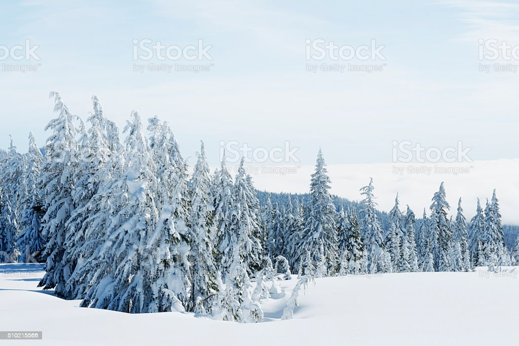 Frozen Wilderness Frozen wilderness on a bright sunny day. The valley below covered in fog.  Adventure Stock Photo