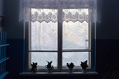 frozen window with flowers and satin