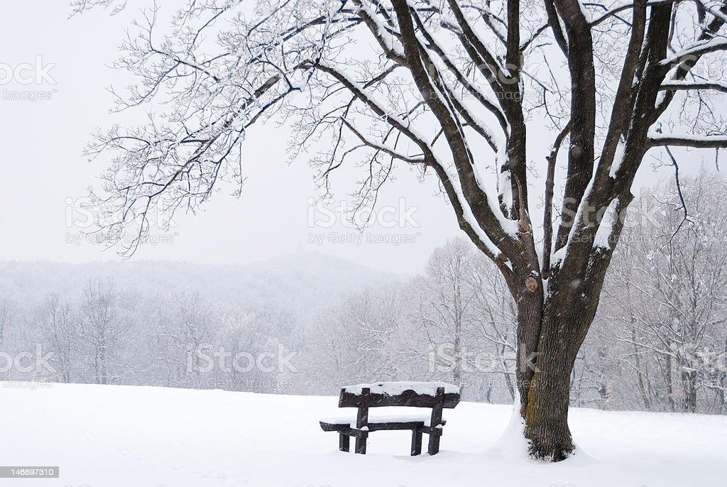 Paisaje con helado invierno cubierto de nieve de banco - foto de stock