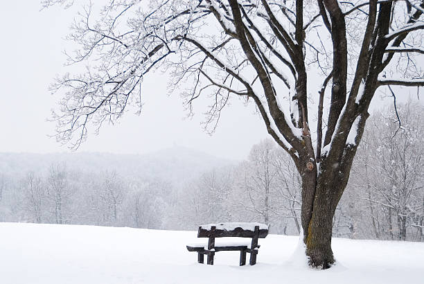 Frozen winter landscape with snow-covered bench stock photo