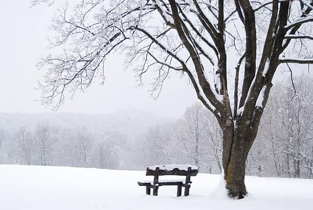Raspadinha de inverno paisagem com neve coberta de banco - foto de acervo