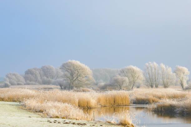 Frozen winter river landscape with a blue sky - foto stock