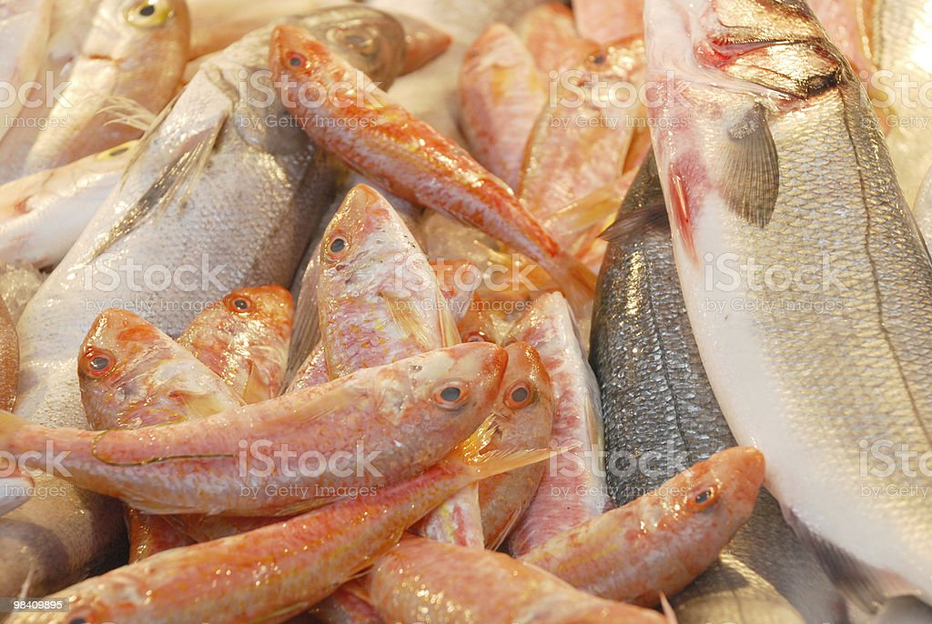 frsh fish royalty-free stock photo