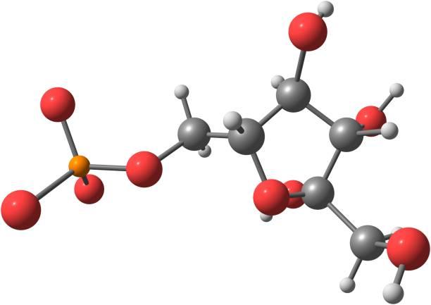 Fructose molecular structure on white background – zdjęcie