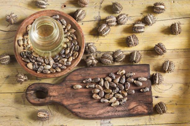 木桌上的水果和蓖麻籽油 - ricin 個照片及圖片檔