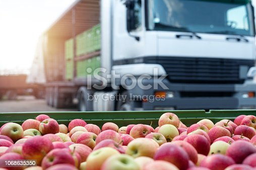 istock Fruit and food distribution. Truck loaded with containers full of apples ready to be shipped to the market. 1068635350