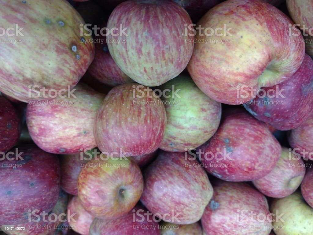 Fruit Apple stock photo