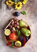 istock fruit autumn harvest 1272457577