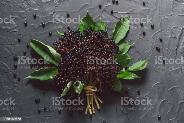 Photo of Fruit black elderberry on a dark background. (Sambucus nigra). European black elderberry background