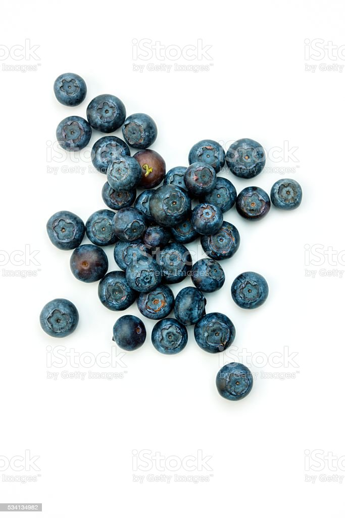 Fruit: Blueberries on white stock photo