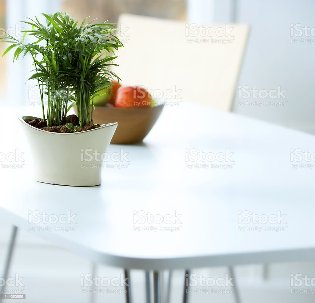 Fruit bowl and potted plant on a dining table royalty-free stock photo