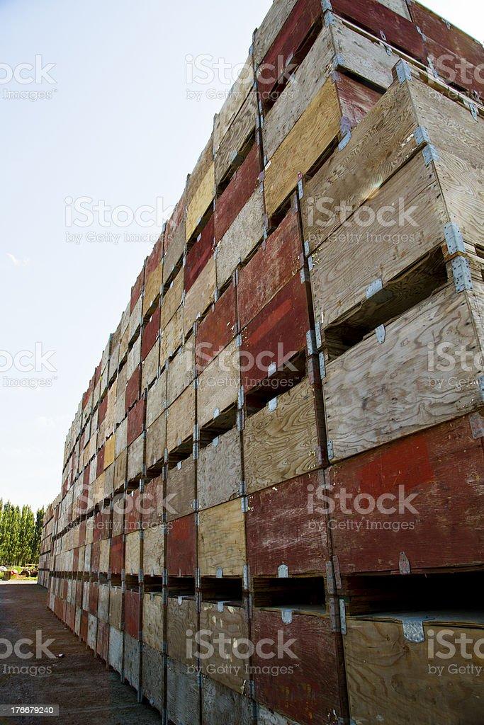 Cajas de frutas foto de stock libre de derechos