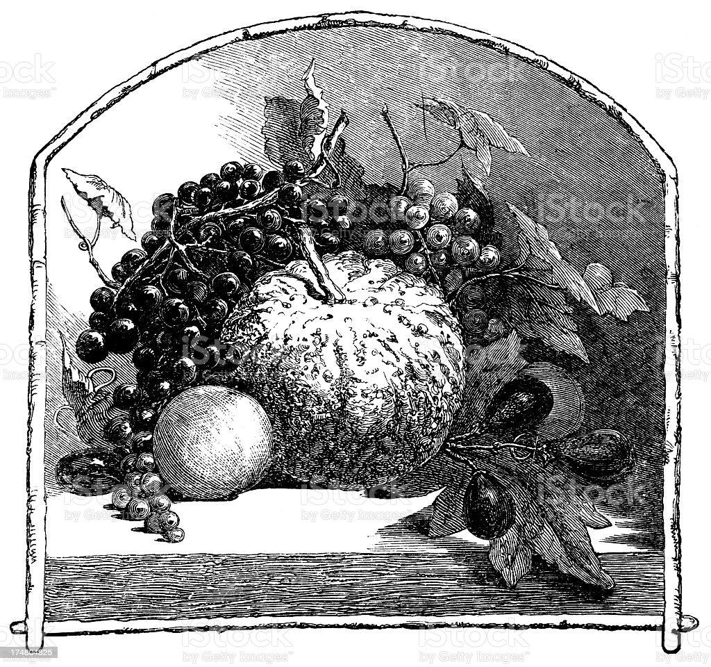 Fruit in Frame stock photo