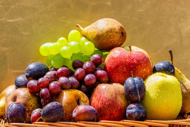 obst im garten - äpfel, birnen, pflaumen und trauben - obstkorb stock-fotos und bilder