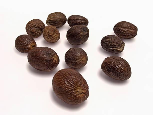 Fruit of Knema Attenuata. Wild Nutmeg Fruit of Knema Attenuata. Wild Nutmeg garam masala stock pictures, royalty-free photos & images