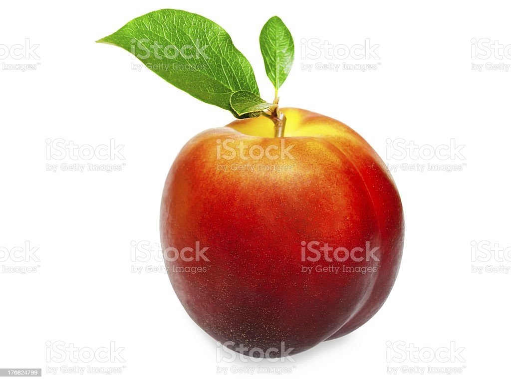 fruit stock photo