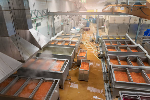 fruit processing plant - canned fruit factory - food factory - tomato can stock photos and pictures