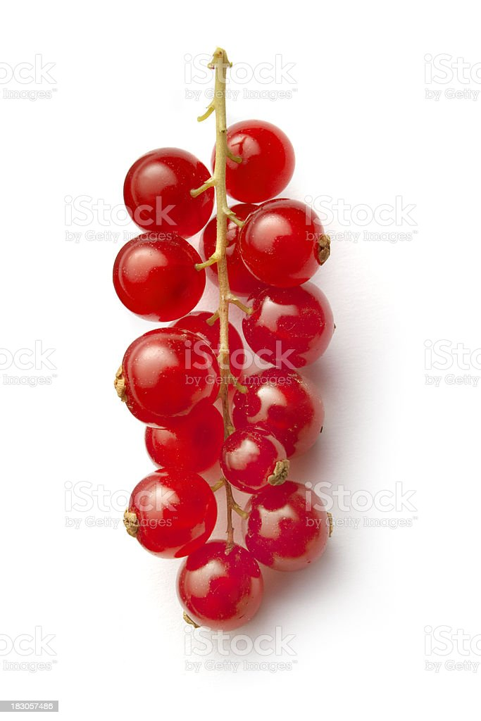 Fruit: Red Currant Isolated on White Background stock photo