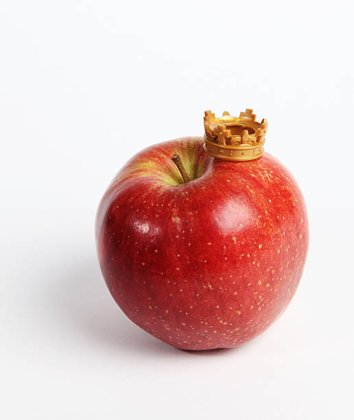Fruit rules stock photo