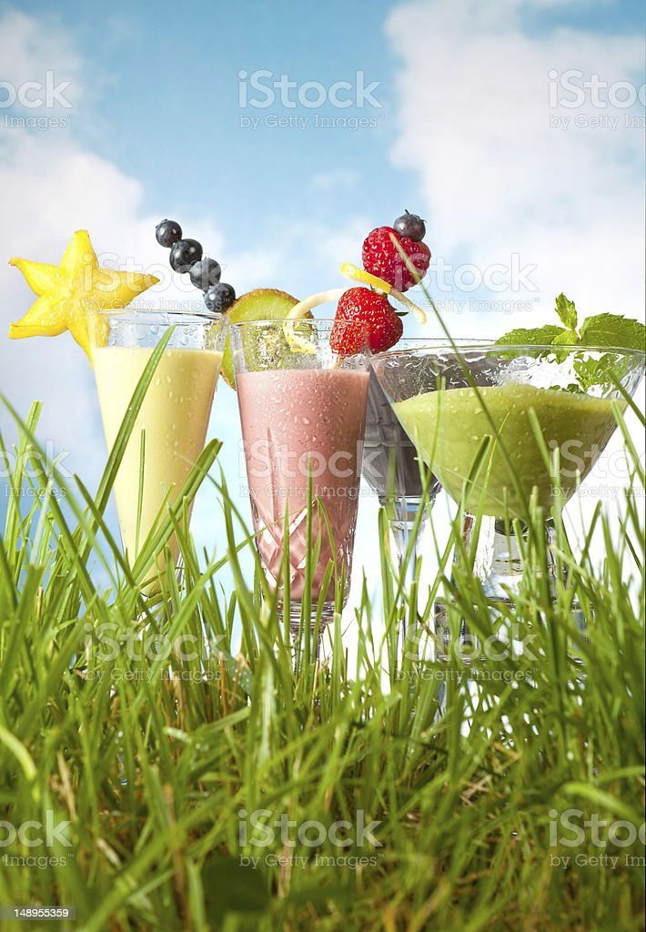 Fruit smoothies in the garden royalty-free stock photo
