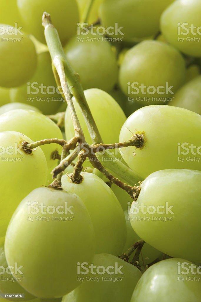 Fruit Stills: Green Grapes royalty-free stock photo