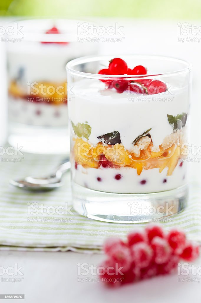 Fruit Trifle Dessert stock photo