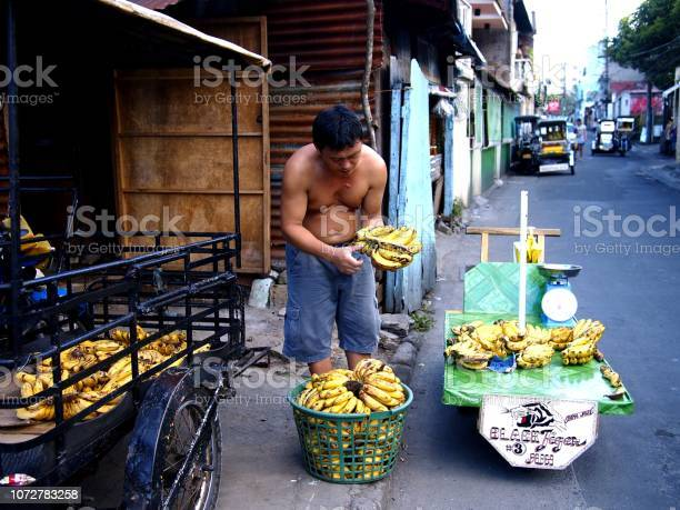 Fruit vendor prepares bananas which he sells on his fruit cart picture id1072783258?b=1&k=6&m=1072783258&s=612x612&h=kohepswmzfrszdu8x2b57qyqksduklbdyhcjlyudtes=