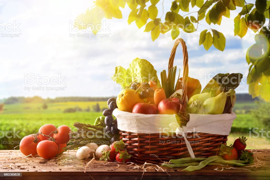 Fruits and vegetables on table and crop landscape background stock photo