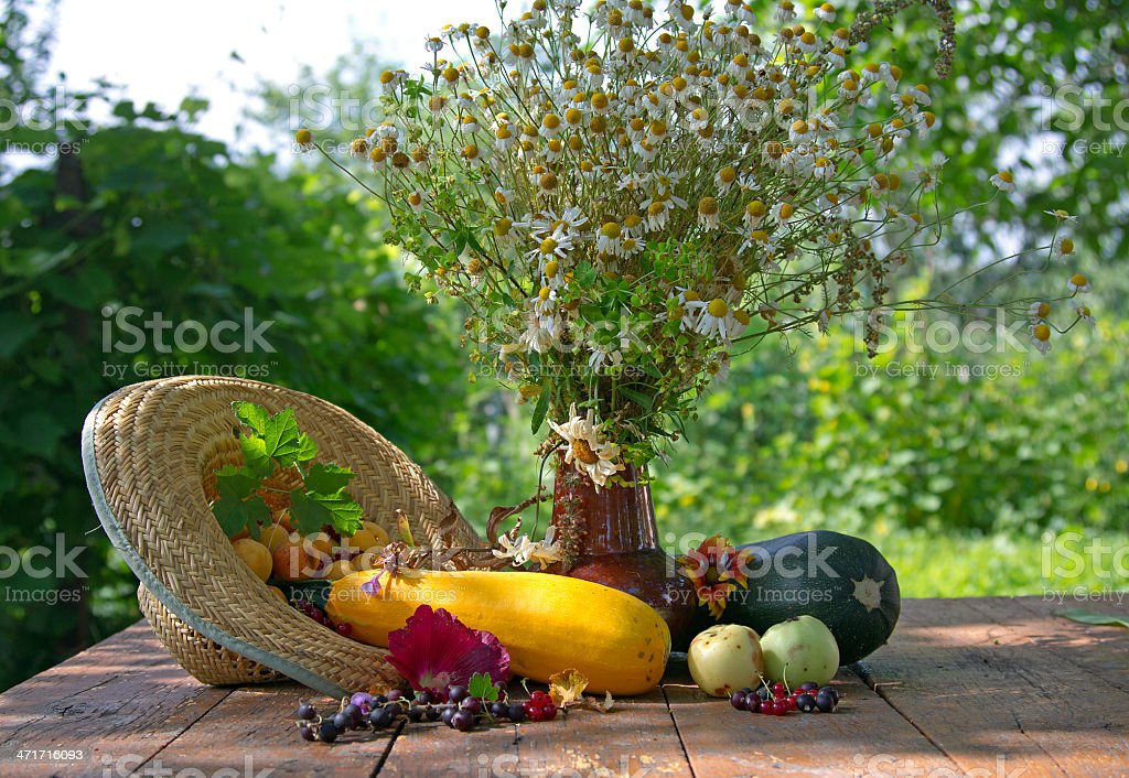 Fruits and Vegetables still life royalty-free stock photo