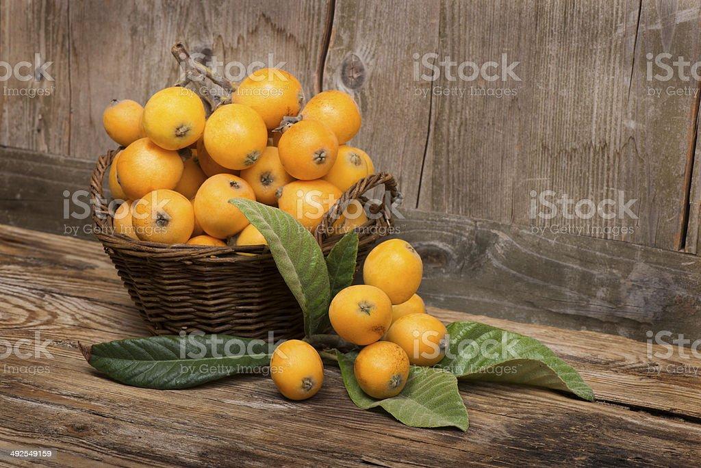 Fruits of loquat tree stock photo