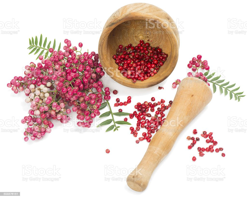 Fruits of peruvian pepper tree stock photo