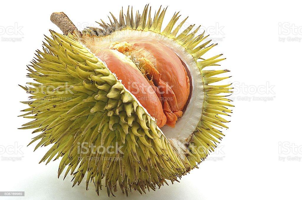 Fruits of Sabah Borneo called 'Durian Dalit' . stock photo