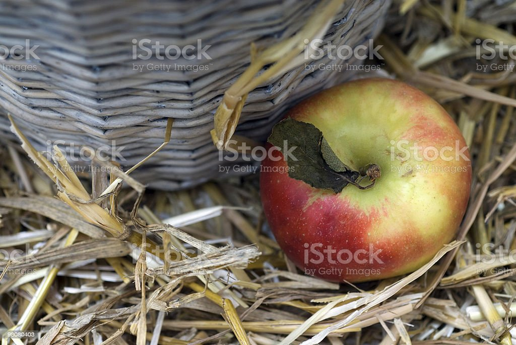 Fruity royalty-free stock photo