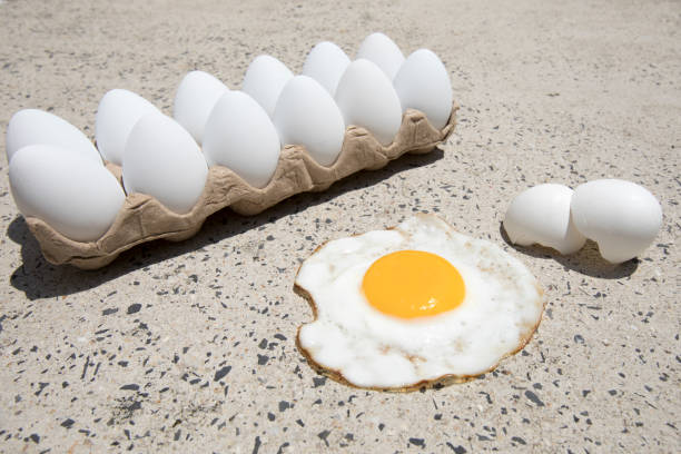 Fry an egg on the sidewalk day stock photo