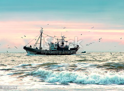 istock Fshing ship surrounded  of seagulls in Atlantic ocean at sunset 915139676