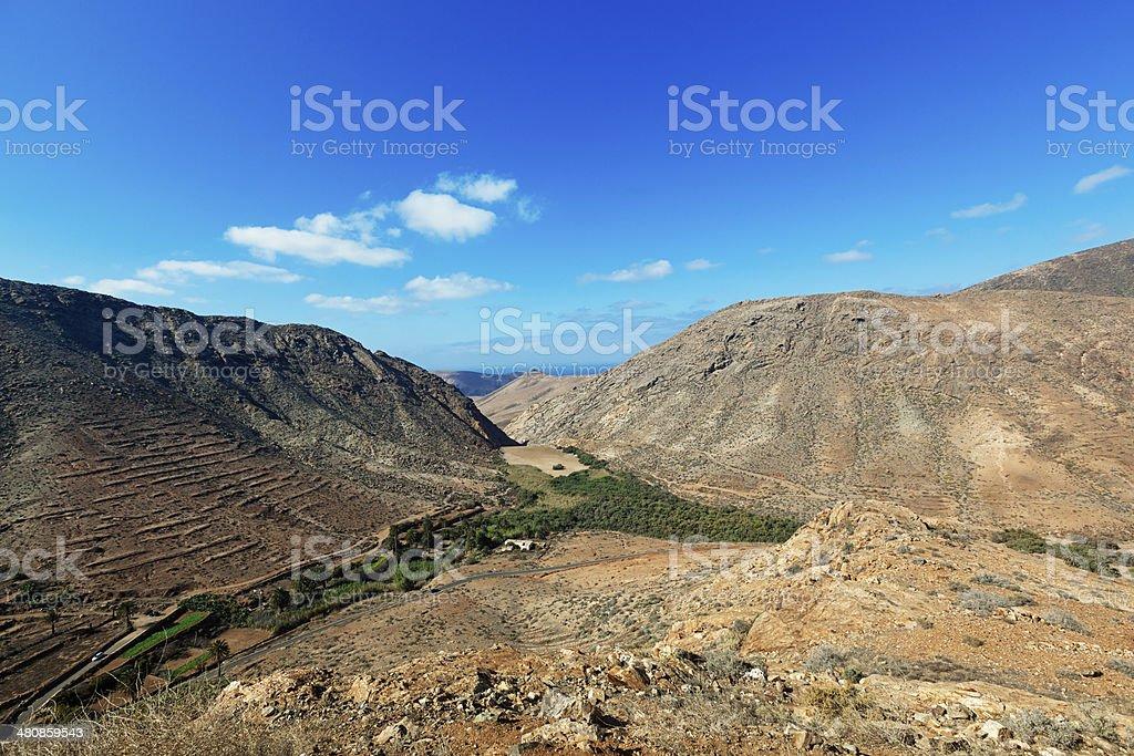 fuerteventura green valley royalty-free stock photo