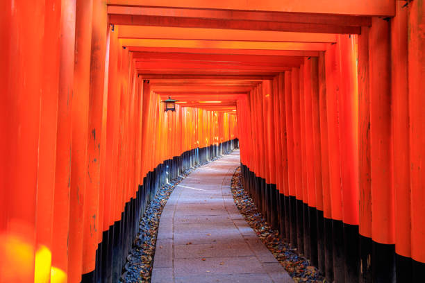 Fujimi Inari Shrine Kyoto, Japan Kyoto - Japan - April 9,2107: A walking path leads through a tunnel of torii gates. Fujimi Inari Shrine shinto shrine stock pictures, royalty-free photos & images
