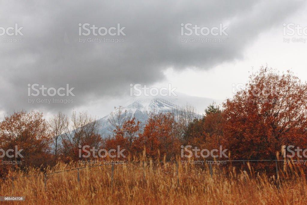 Mont Fuji, le Mont Fuji est la plus haute montagne au Japon avec la saison d'automne - Photo de Arbre libre de droits