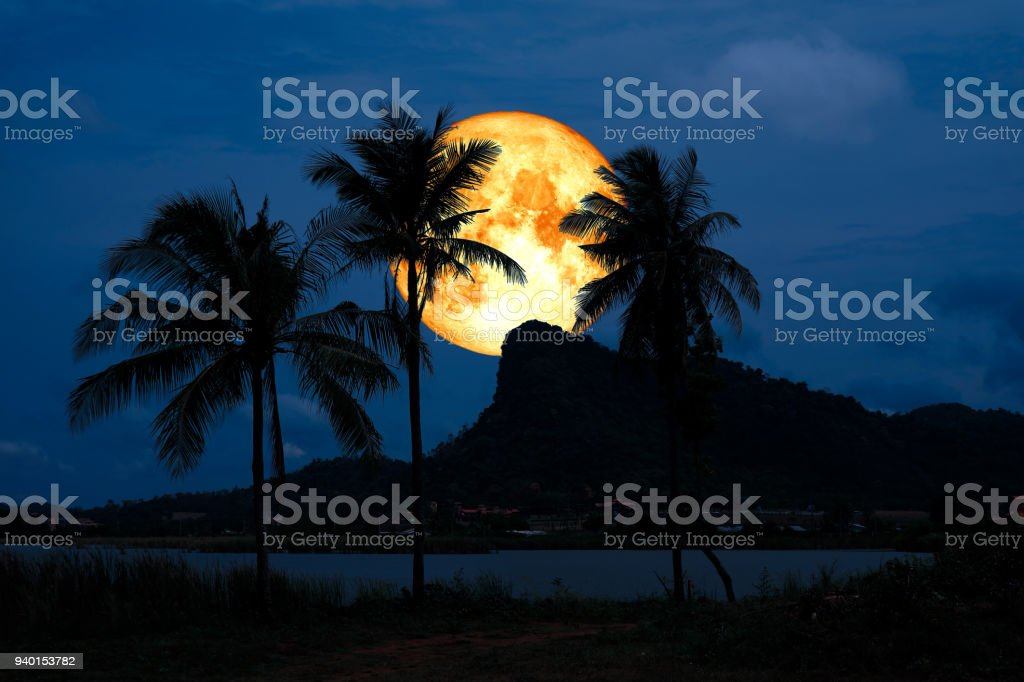 full blood moon back silhouette mountain coconut tree stock photo