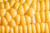 Full corn kernels close-up background