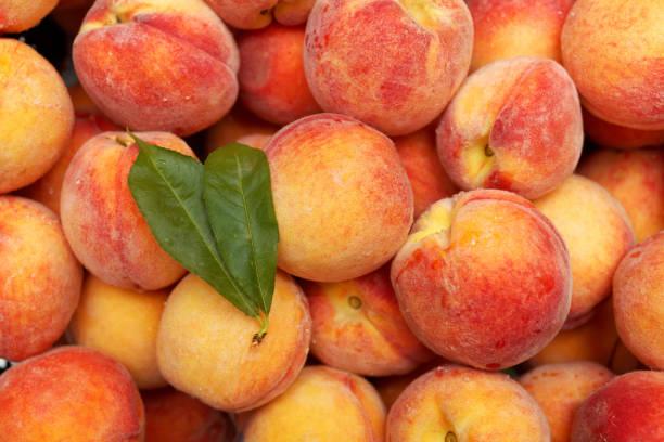 Full-Frame von frischen Pfirsichen – Foto